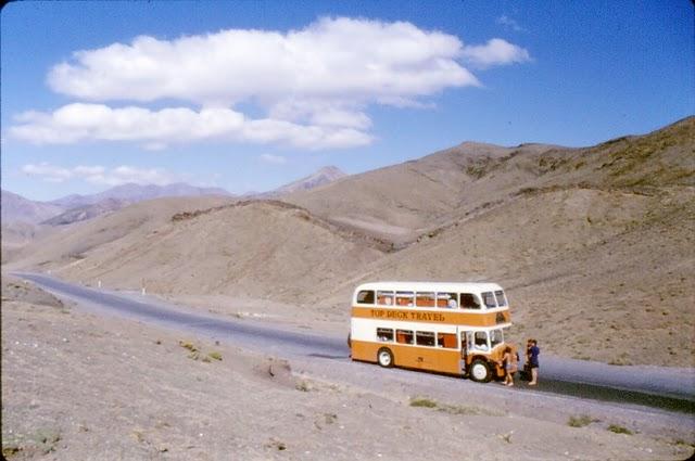 Tadpoles in Iran 1970s