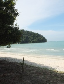 Monkey Beach - Penang
