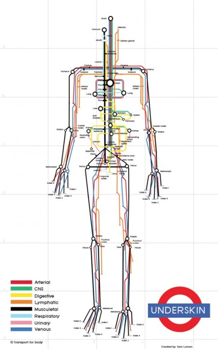 Human Body as Subway Map