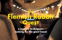 Video: The Flemish Rabbit Quest