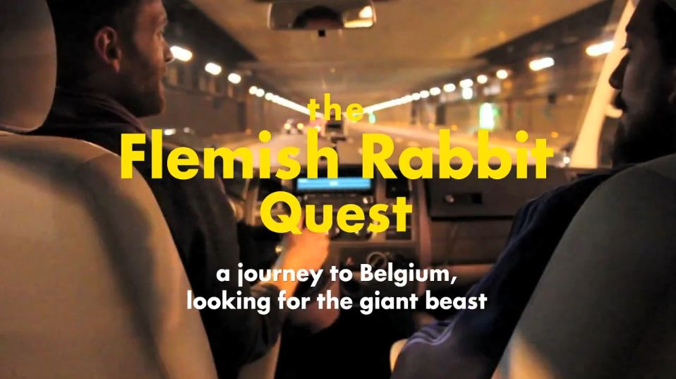 flemish-quest